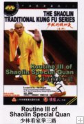 Routine III of Shaolin Special Quan