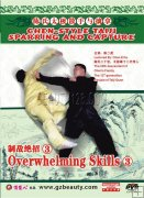 Chen-style Taiji Sparring and Capture--Overwhelming Skills 3