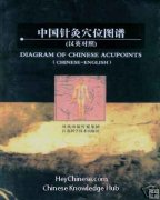 Diagram of Chinese Acupoints, Chinese-English, Medicine Book