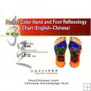 eBook: Pocket Color Hand And Foot Reflexology Chart (English-Chinese)