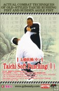Actual Combat Techniques of Old-styled Taichi Rushing Fist and Sudden Agile Fist-Taichi Soft Punching