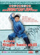 Chen-style Taiji Sparring and Capture--Single basic skill