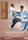 Brief Introduction to Will-and-Form Twelve Pounds by Chu Guiting