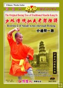 Shaolin Small Back-through Boxing I