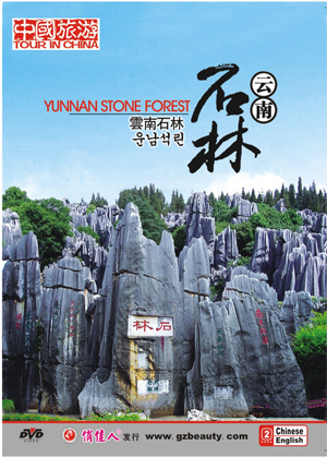 Yunnan Stone Forest - Click Image to Close
